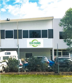 Carole Park QLD distribution center, office and warehouse